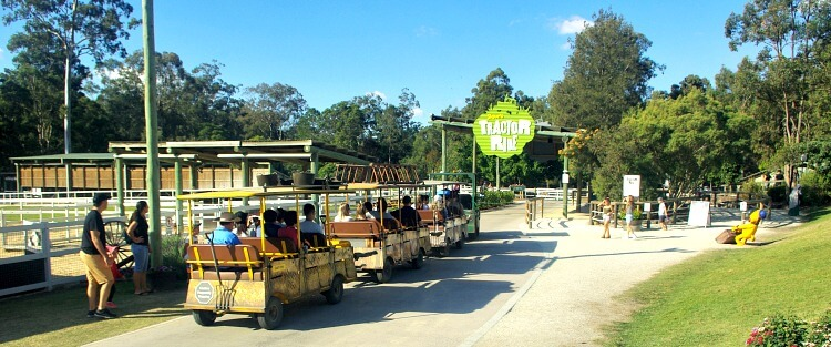 Shauns Tractor Ride at Paradise Country