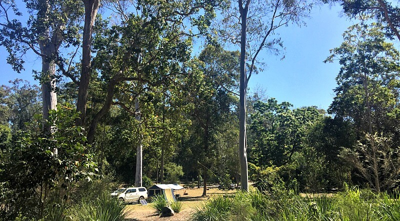 Charlie Moreland Camping Area accessed from Kenilworth Tourist Drive