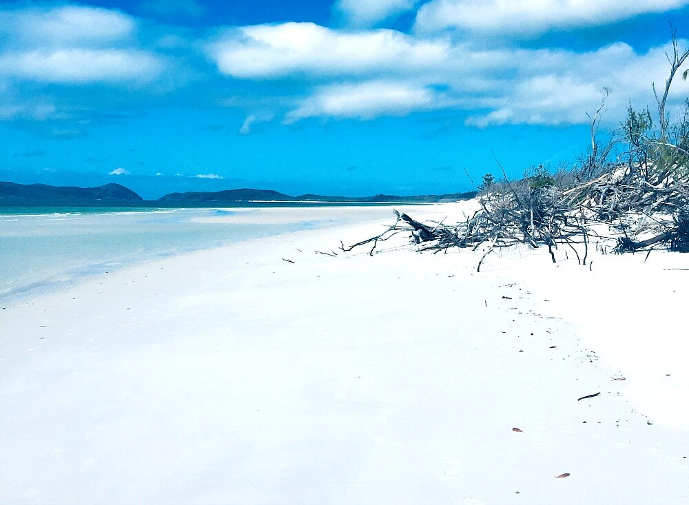 White snad and blue skies on the Northern end of Whitehaven Beach Whitsundays