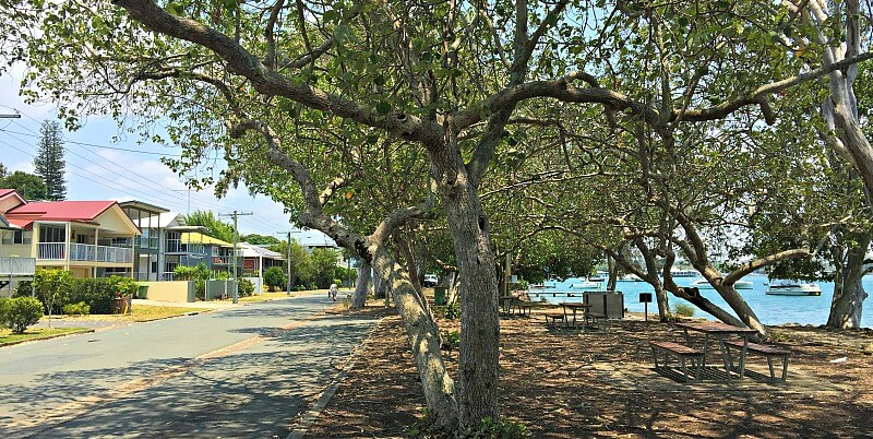 The quiet street of Hilton Esplanade overlooks the boats in Noosa River and a riverside park