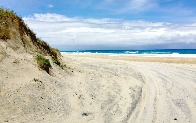 4WD tracks on the beach at Cooloola north of Noosa