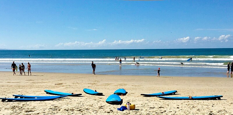 Surf School surfboards laid out on Noosa Main Beach one of the best learn to surf beaches Sunshine Coast Queensland
