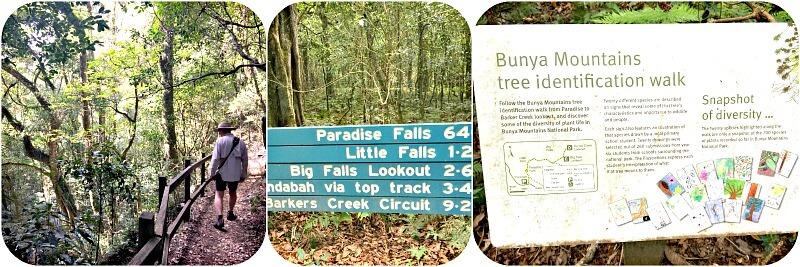 Paradise Falls Walk