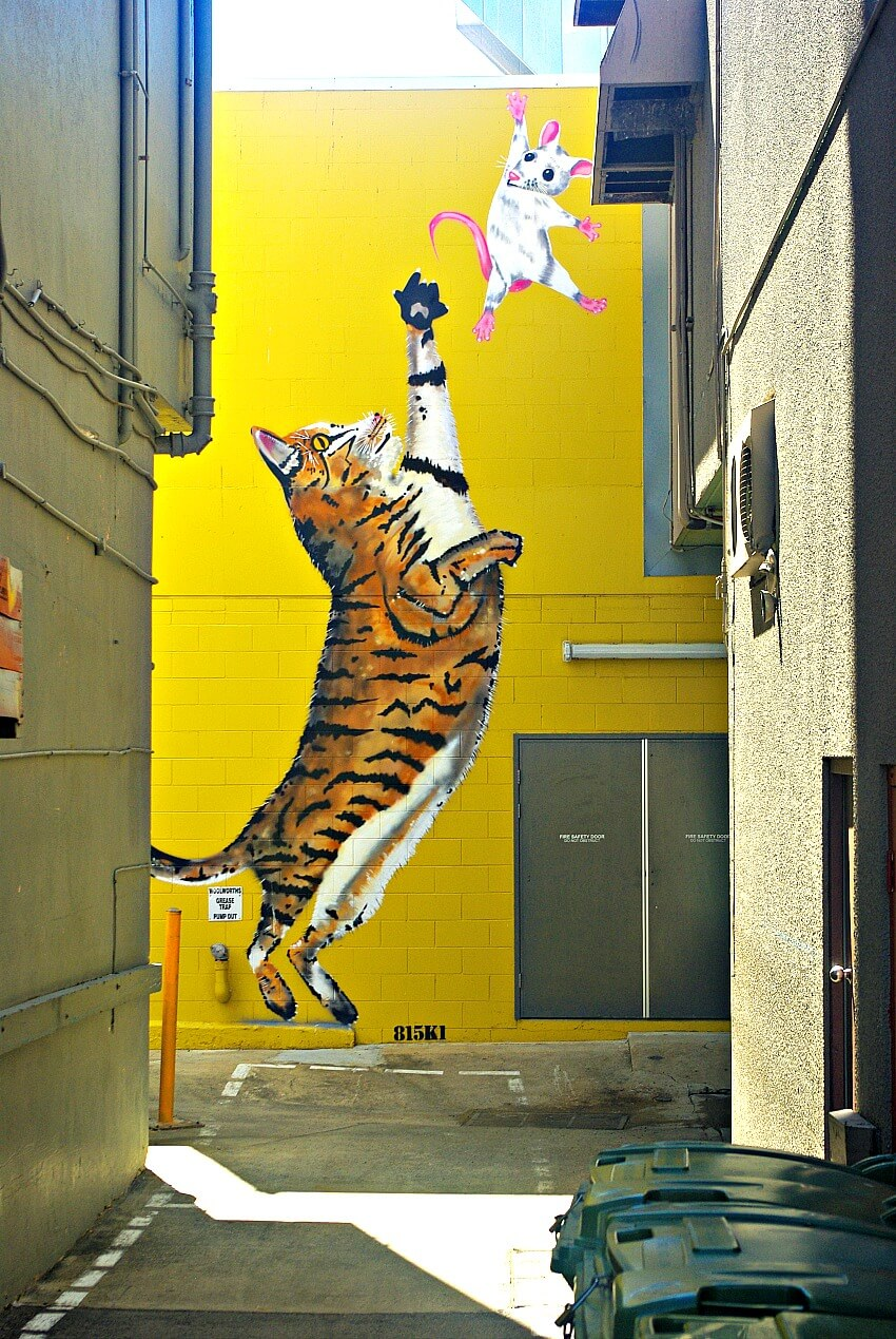 Street Artist 815K1 vibrant orange and brown Cat and White Mouse Mural