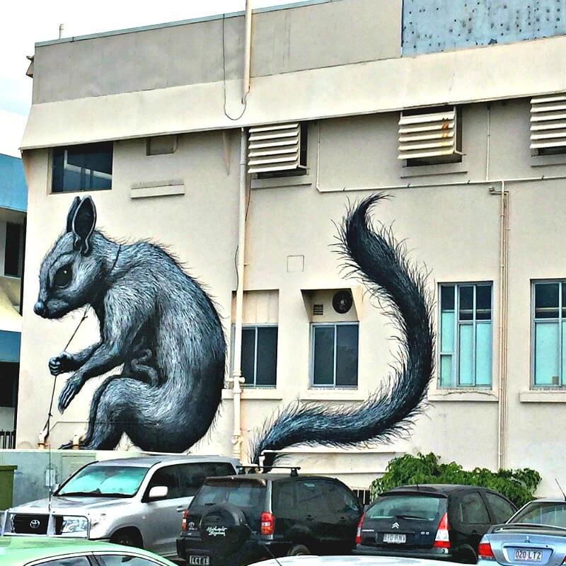 Sugar Glider Mural by ROA Townsville