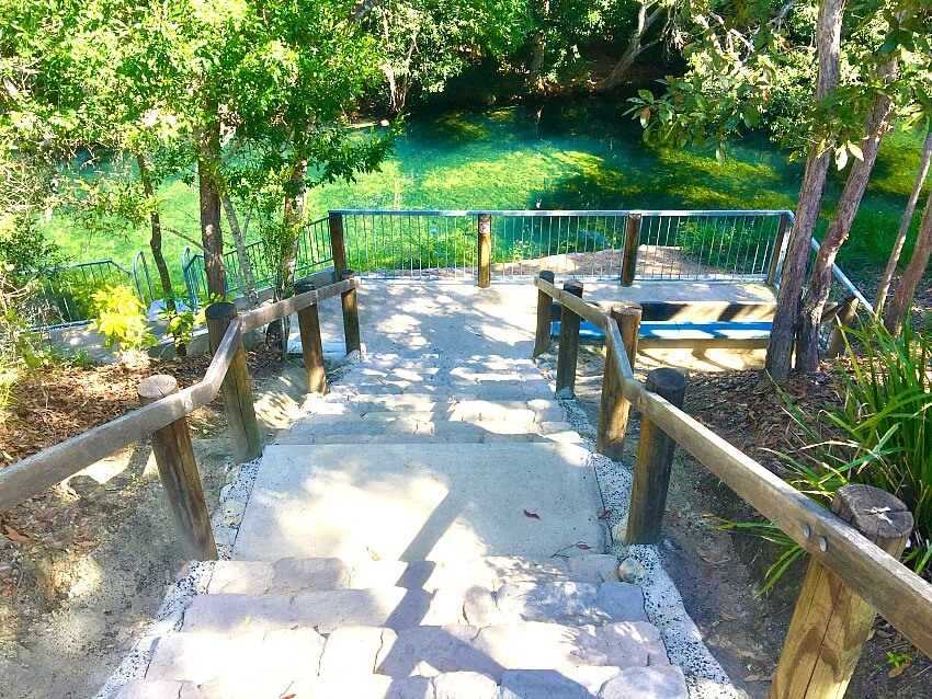 Five Mile Creek Cardwell Swimming Hole stairs overlooking green water