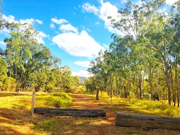 Country scene of red dirt path through dry forest on the Atherton Rail Trail