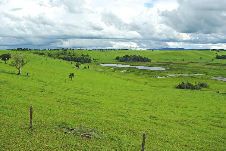 Green fields surrounding the wetlands of Bromfield Swamp