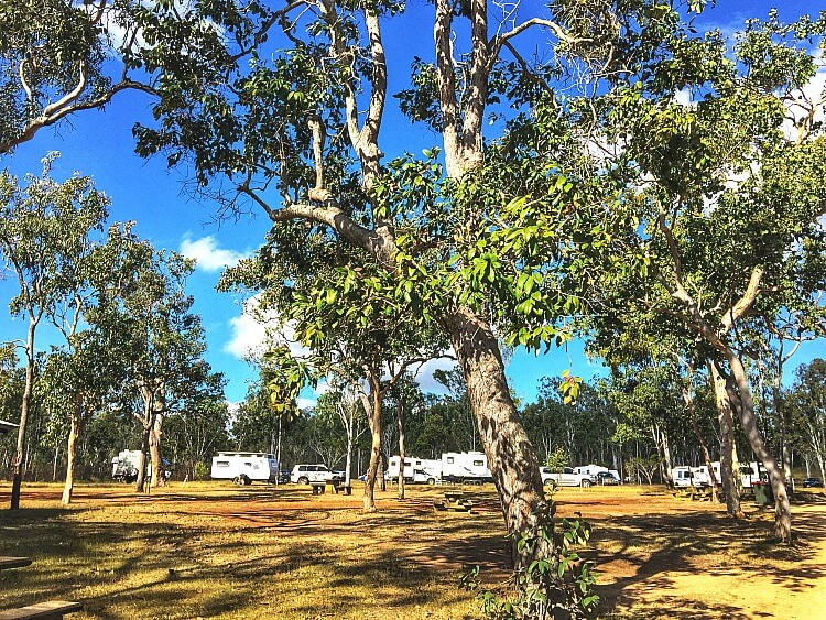 Free Camping Atherton Tablelands at Rocky Creek Memorial Park amongst tall trees