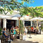Dog Friendly Cafes Sunshine Coast plus Restaurants and Bars