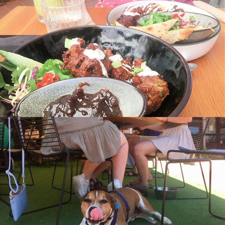 Collage of dogs and Dining at Cafe Vie Buderim