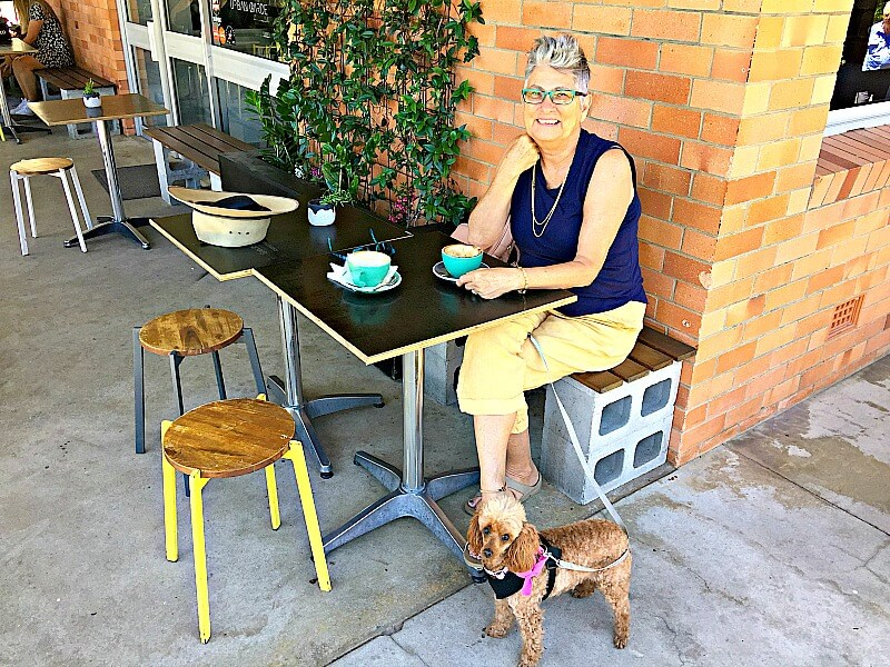 Urban Garden Verandah with our Toy Poodle