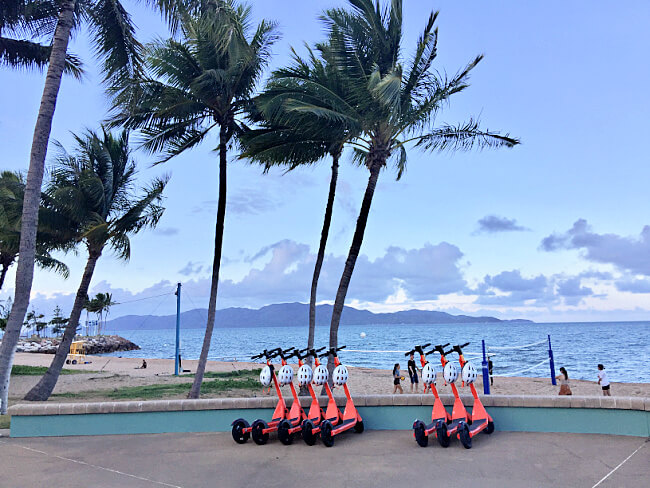 Scooter Hire Townsville Strand. Orange Scooters with white helmets with a background of palm trees and Magnetic Island