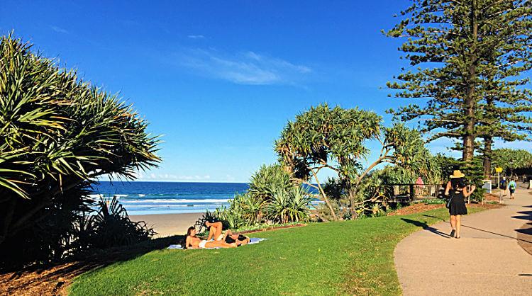 Grass Picnic Spot Beach Access 80 Coolum Picnic Spot