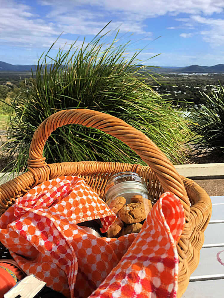 Picnic basket and hinterland view Lows Lookout Coolum