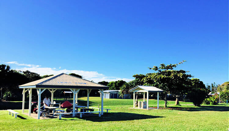 Undercover Picnic at Norrie Job Park Coolum