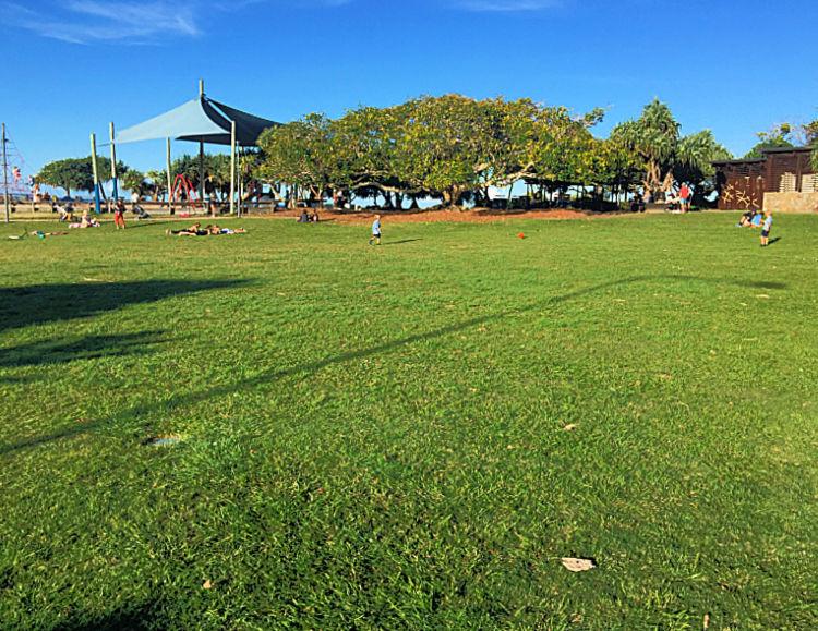 Green grass in Tickle Park Coolum