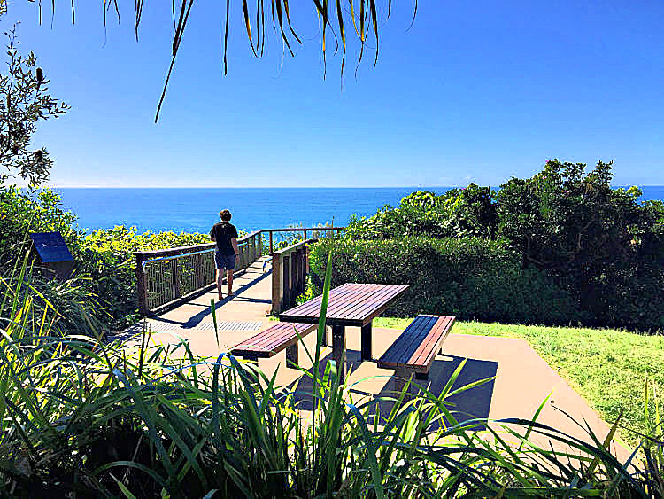 Picnic Table at Whale Watching Platform Coolum Beach Picnic Spot