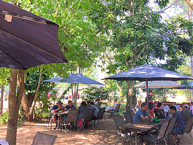 Tables under umbrellas in the tree shaded courtyard of Heritage Tea Rooms Herveys Range Townsville