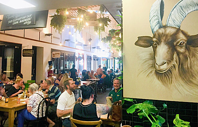 Drawing of a Goat at the Spirited Goat Cafe at the Precinct Townsville